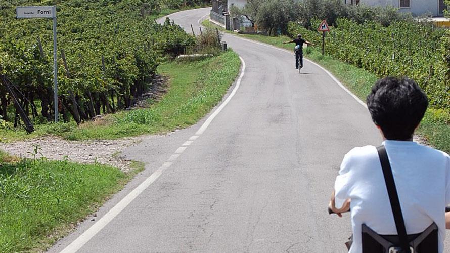 タルタルーガ自転車TypeFOLDINGイタリアベローナ